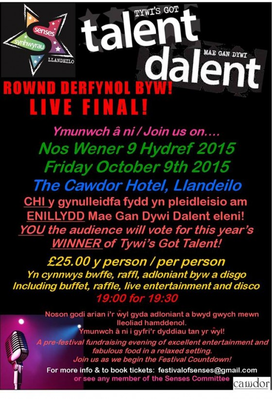 Tywi's Got Talent – The Final